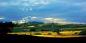 坝上草原-塞罕坝国家森林公园-乌兰布统草原3日游